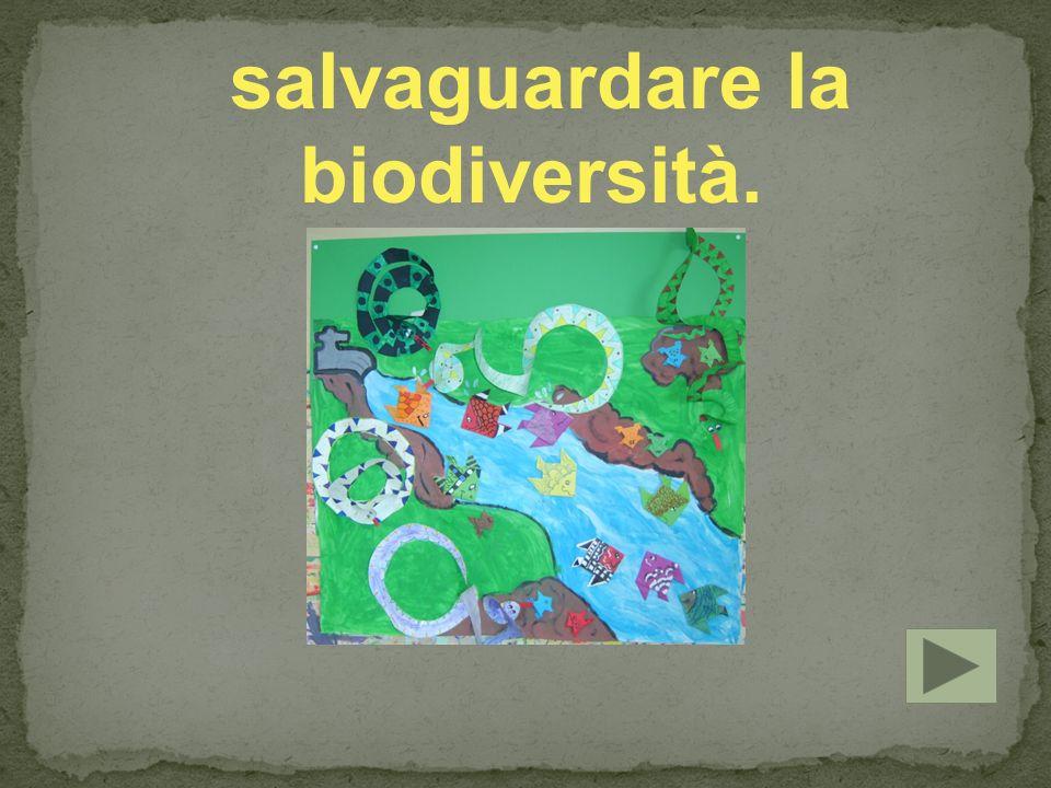 salvaguardare la biodiversità.