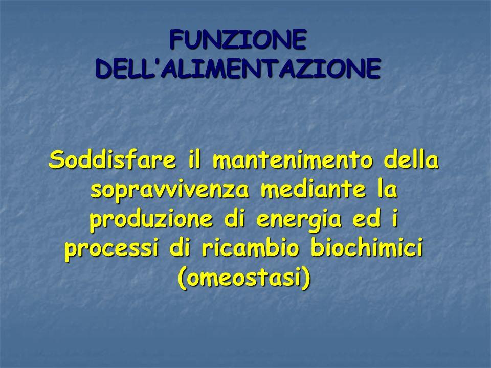FUNZIONE DELL'ALIMENTAZIONE
