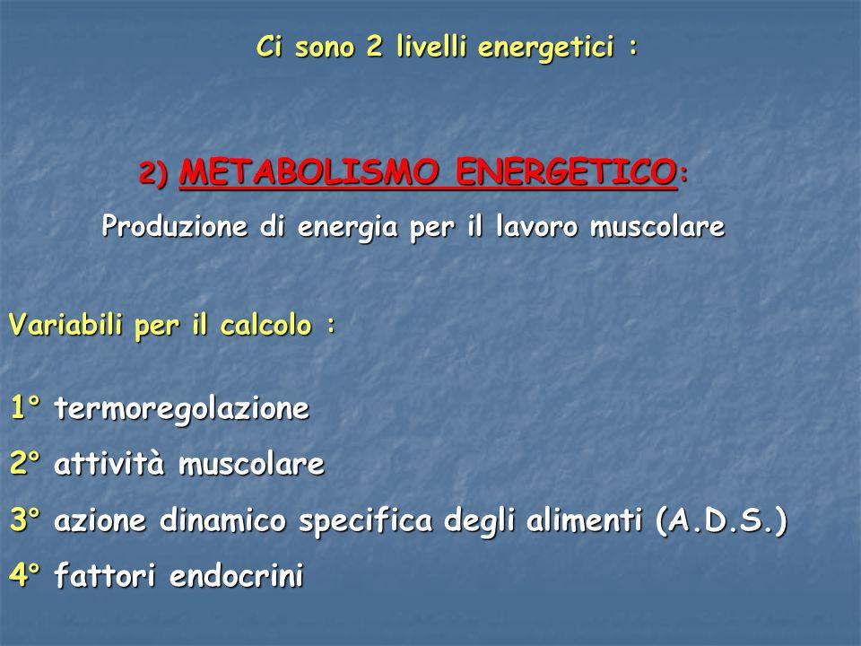 3° azione dinamico specifica degli alimenti (A.D.S.)