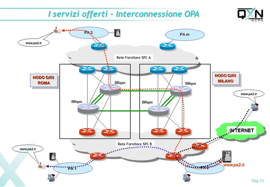 I servizi offerti – Interconnessione OPA