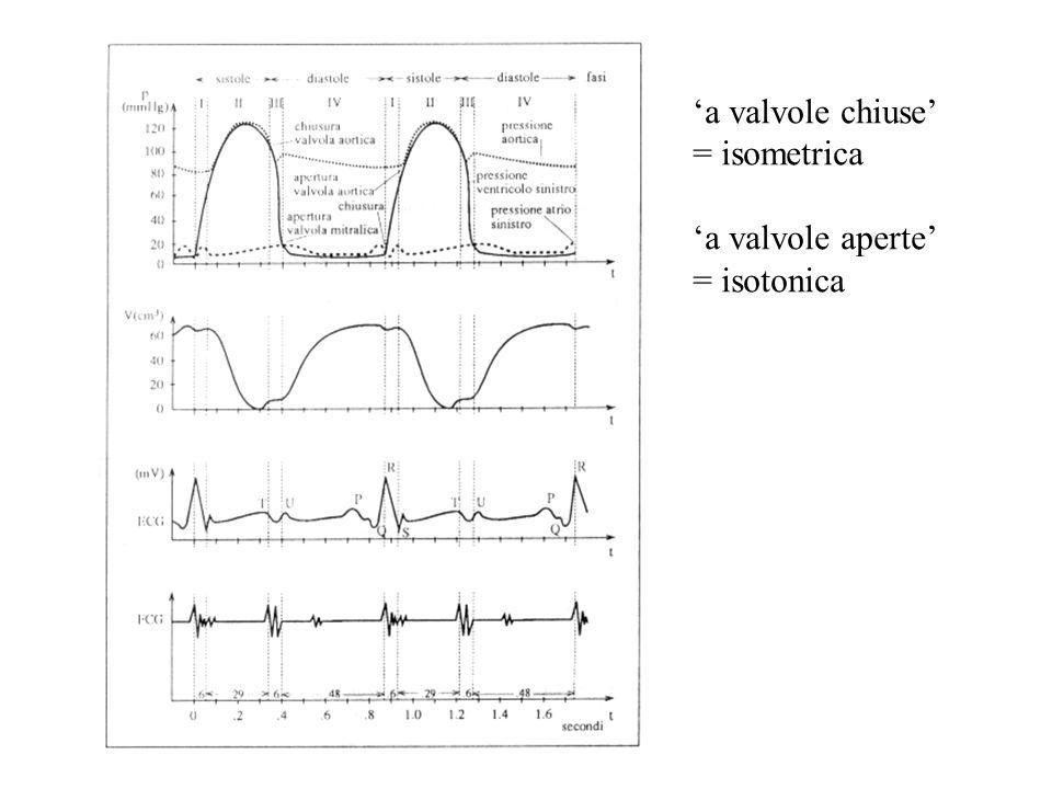 'a valvole chiuse' = isometrica 'a valvole aperte' = isotonica