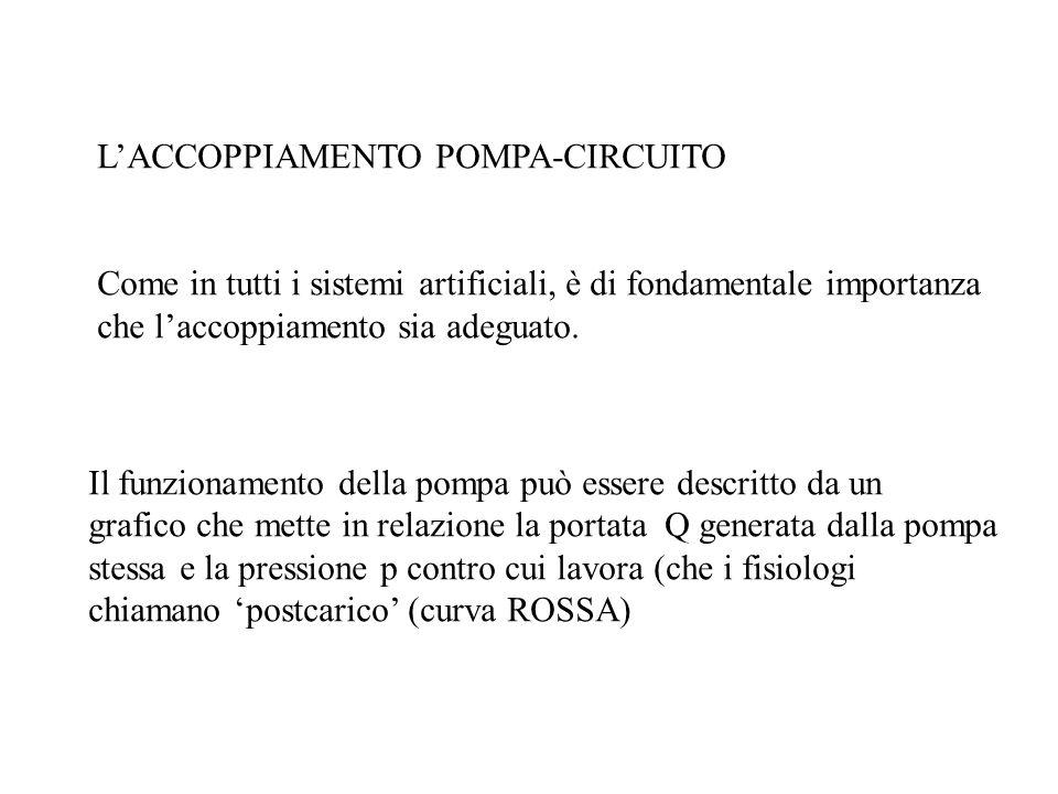 L'ACCOPPIAMENTO POMPA-CIRCUITO