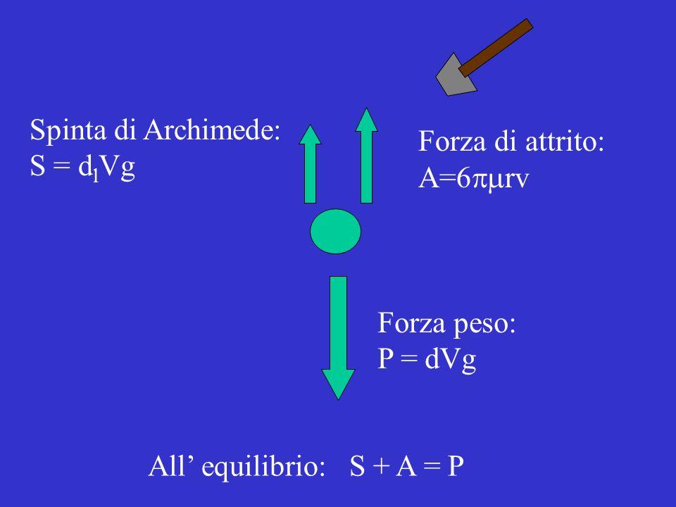 Spinta di Archimede: S = dlVg. Forza di attrito: A=6pmrv.