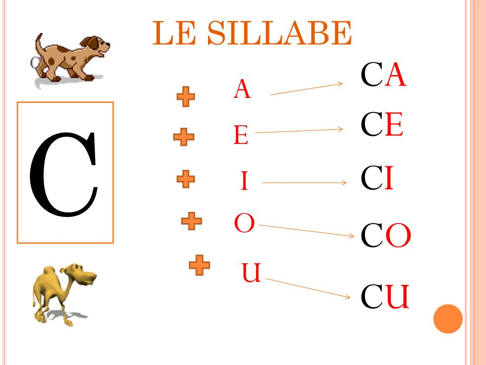 LE SILLABE c CA A CE C E CI I O CO U CU