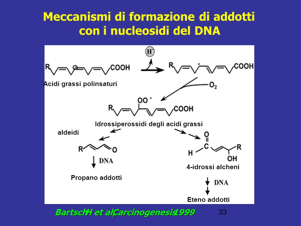 Meccanismi di formazione di addotti con i nucleosidi del DNA