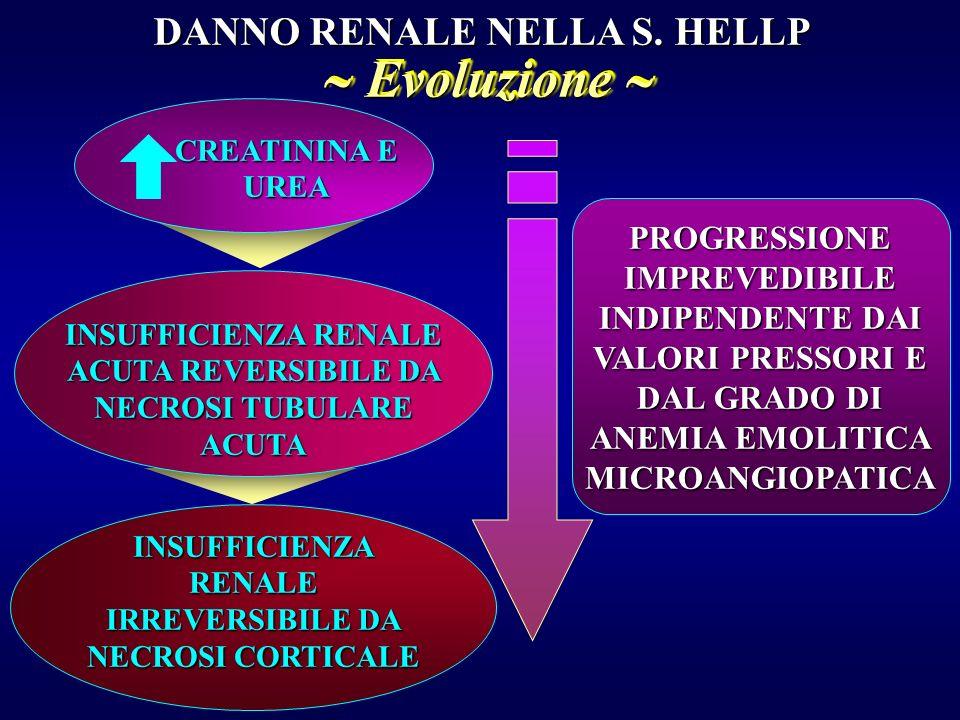  Evoluzione  DANNO RENALE NELLA S. HELLP