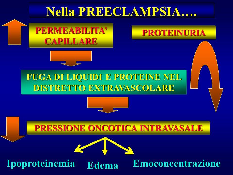Nella PREECLAMPSIA…. Ipoproteinemia Emoconcentrazione Edema