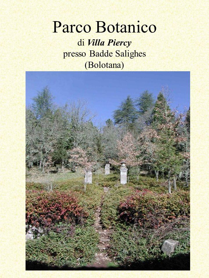 Parco Botanico di Villa Piercy presso Badde Salighes (Bolotana)