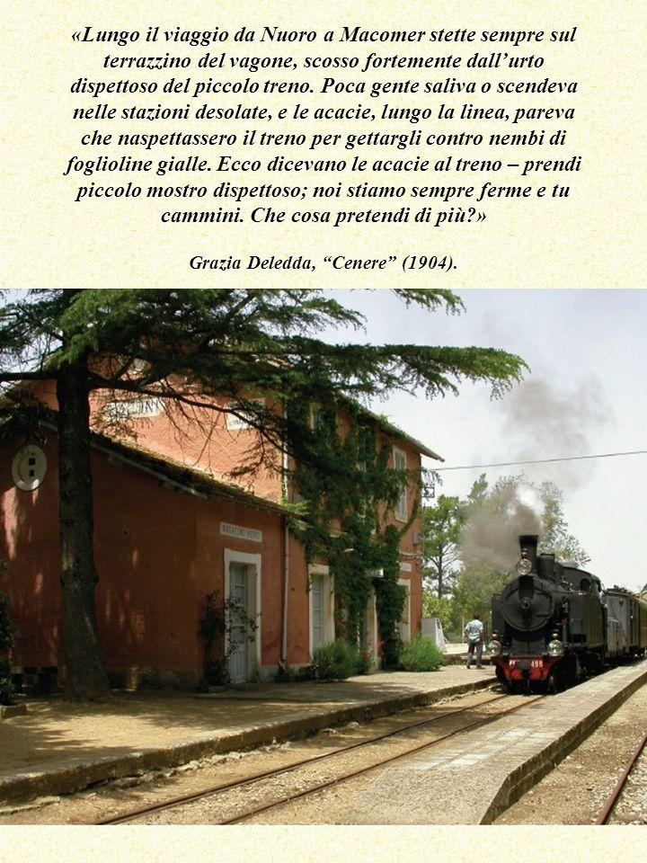 «Lungo il viaggio da Nuoro a Macomer stette sempre sul terrazzino del vagone, scosso fortemente dall'urto dispettoso del piccolo treno. Poca gente saliva o scendeva nelle stazioni desolate, e le acacie, lungo la linea, pareva che naspettassero il treno per gettargli contro nembi di foglioline gialle. Ecco dicevano le acacie al treno – prendi piccolo mostro dispettoso; noi stiamo sempre ferme e tu cammini. Che cosa pretendi di più » Grazia Deledda, Cenere (1904).