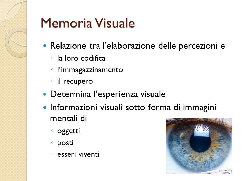 Memoria Visuale Relazione tra l'elaborazione delle percezioni e