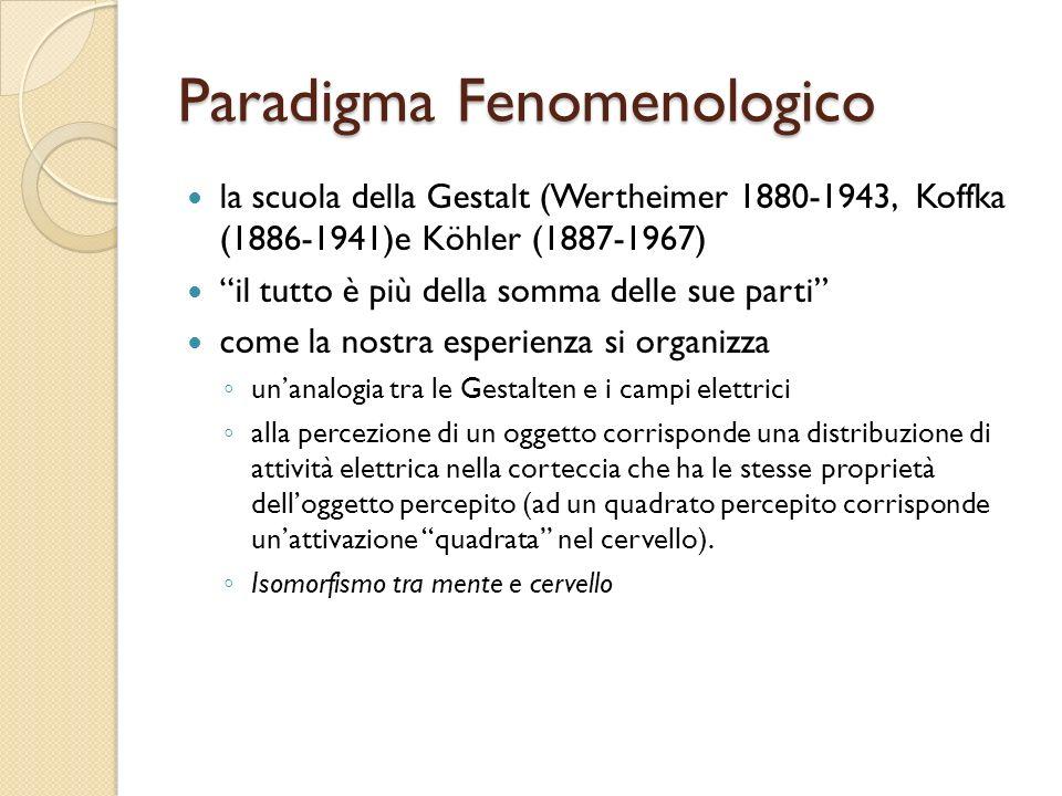 Paradigma Fenomenologico