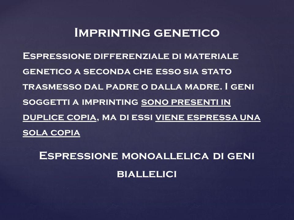 Espressione monoallelica di geni biallelici