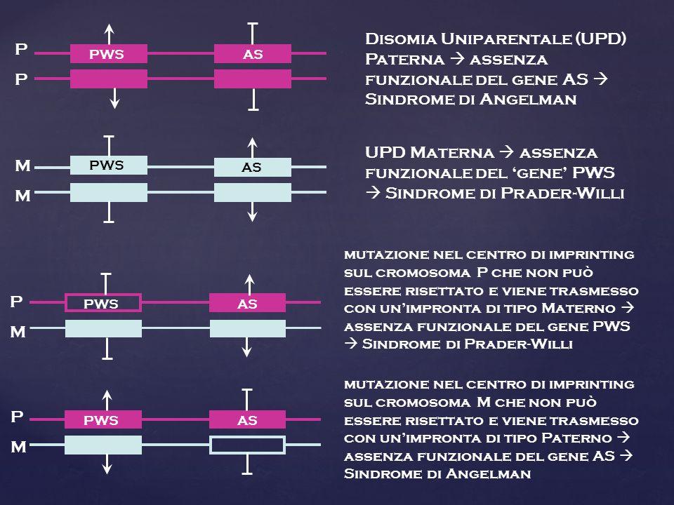 Disomia Uniparentale (UPD) Paterna  assenza funzionale del gene AS  Sindrome di Angelman