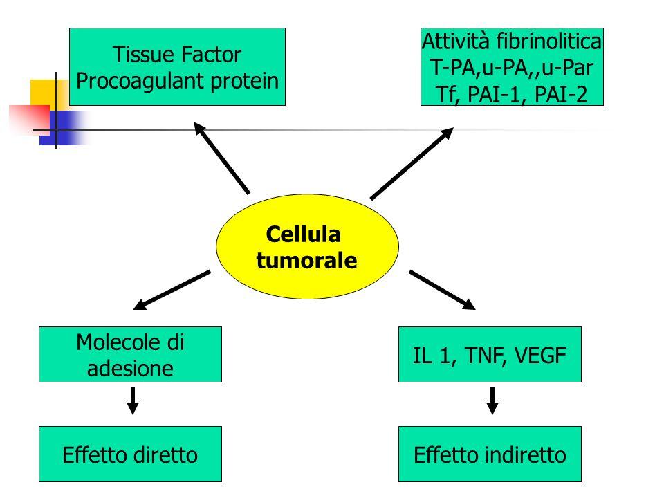 Attività fibrinolitica