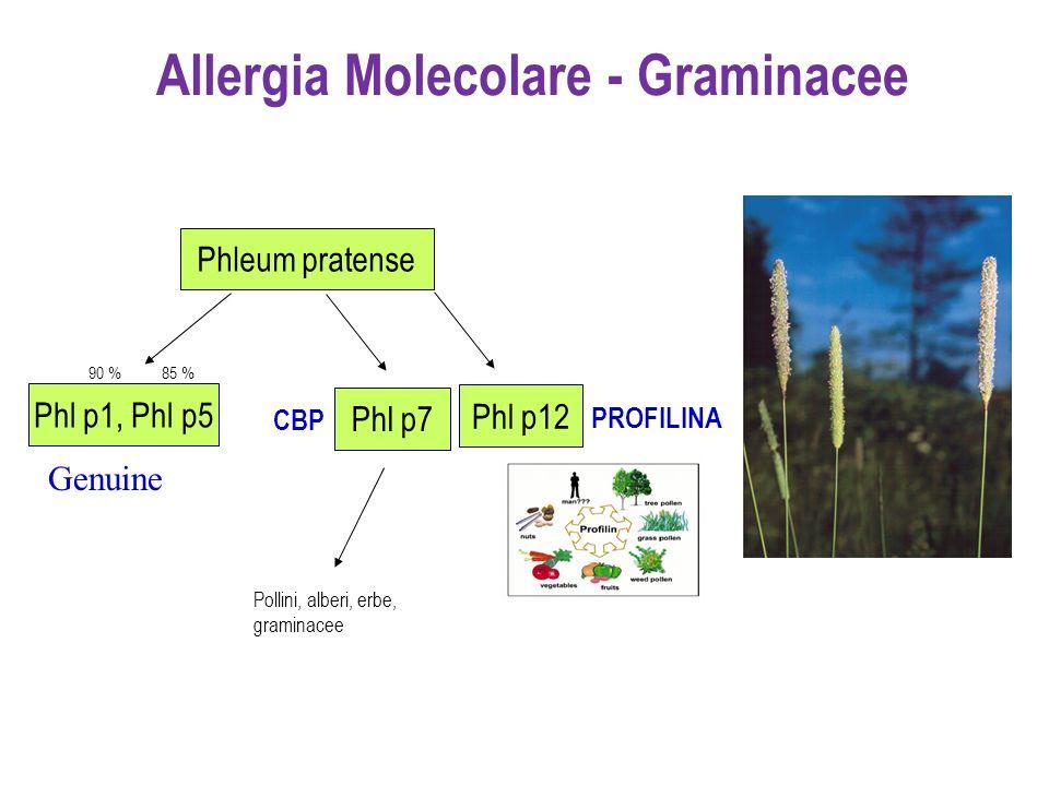 Allergia Molecolare - Graminacee