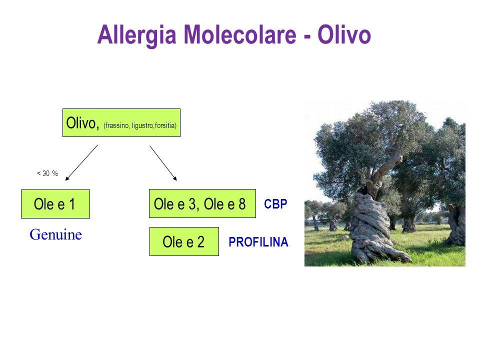 Allergia Molecolare - Olivo