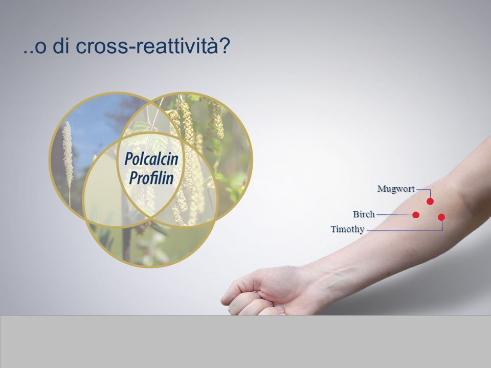 Profilins and polcalcins may cause positive tests