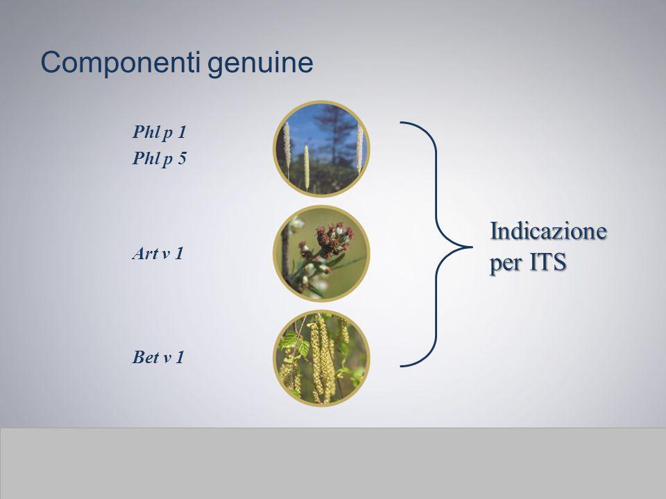 Componenti genuine Phl p 1 Phl p 5 Indicazione per ITS Art v 1 Bet v 1