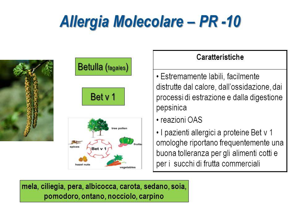 Allergia Molecolare – PR -10