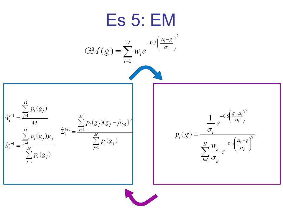 Es 5: EM