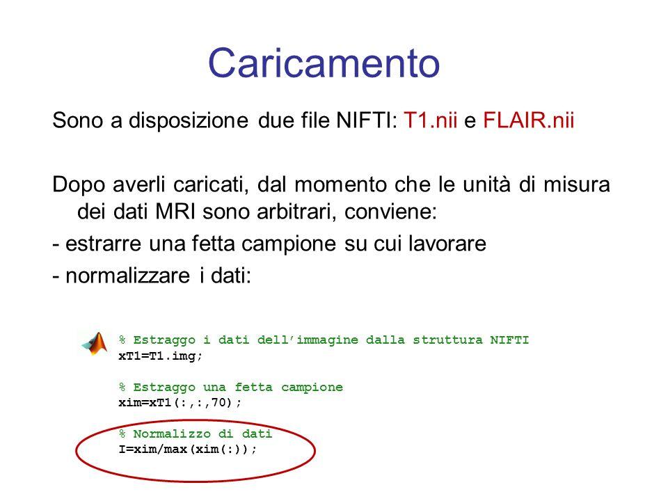 Caricamento Sono a disposizione due file NIFTI: T1.nii e FLAIR.nii