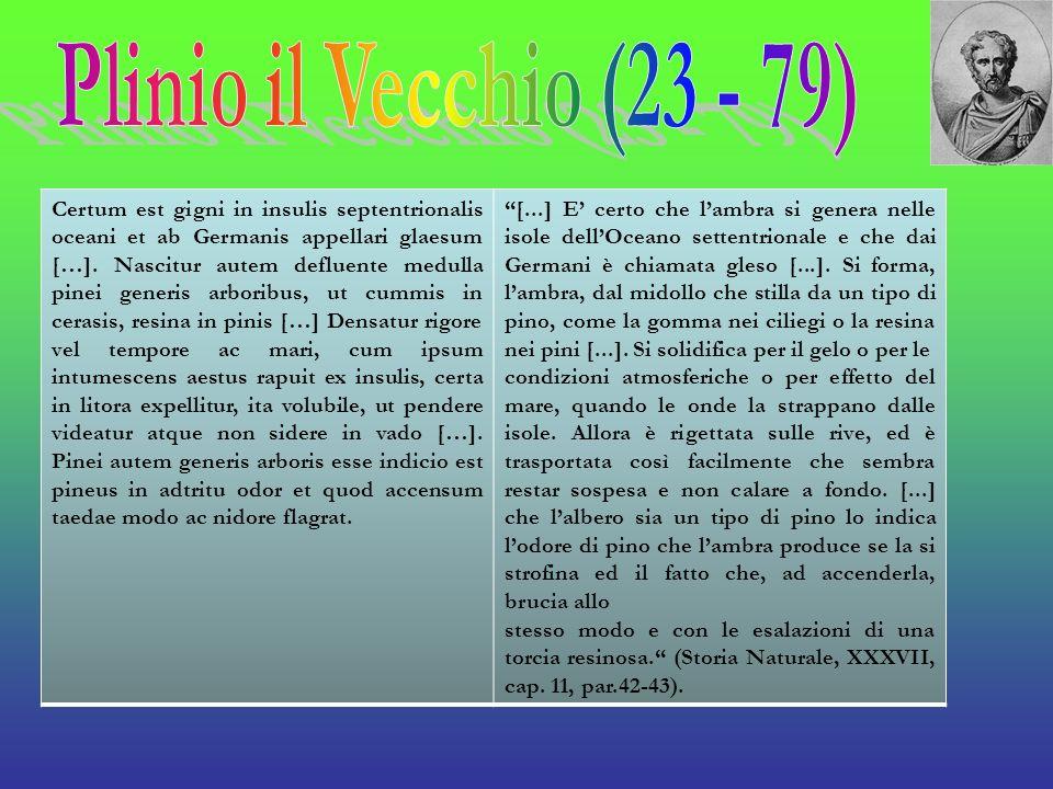 Plinio il Vecchio (23 - 79)