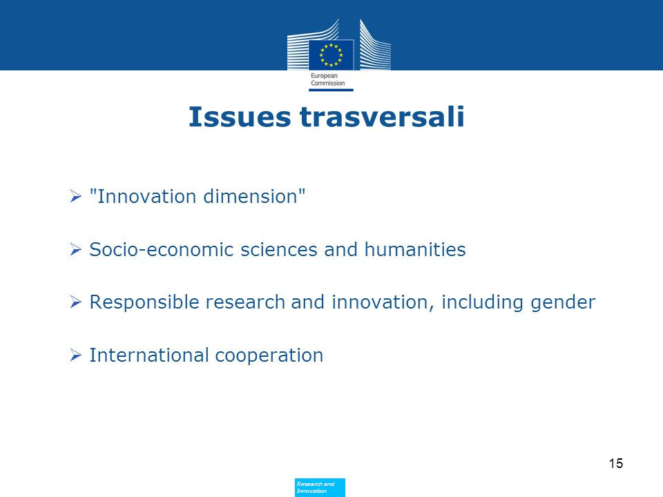 Issues trasversali Innovation dimension