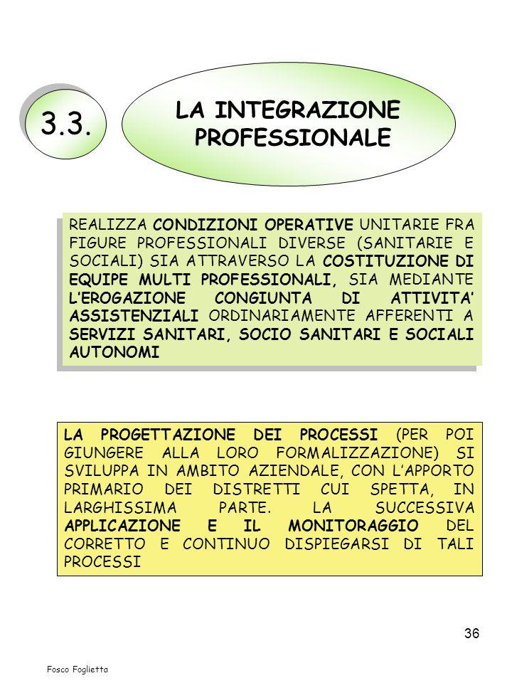 3.3. LA INTEGRAZIONE PROFESSIONALE