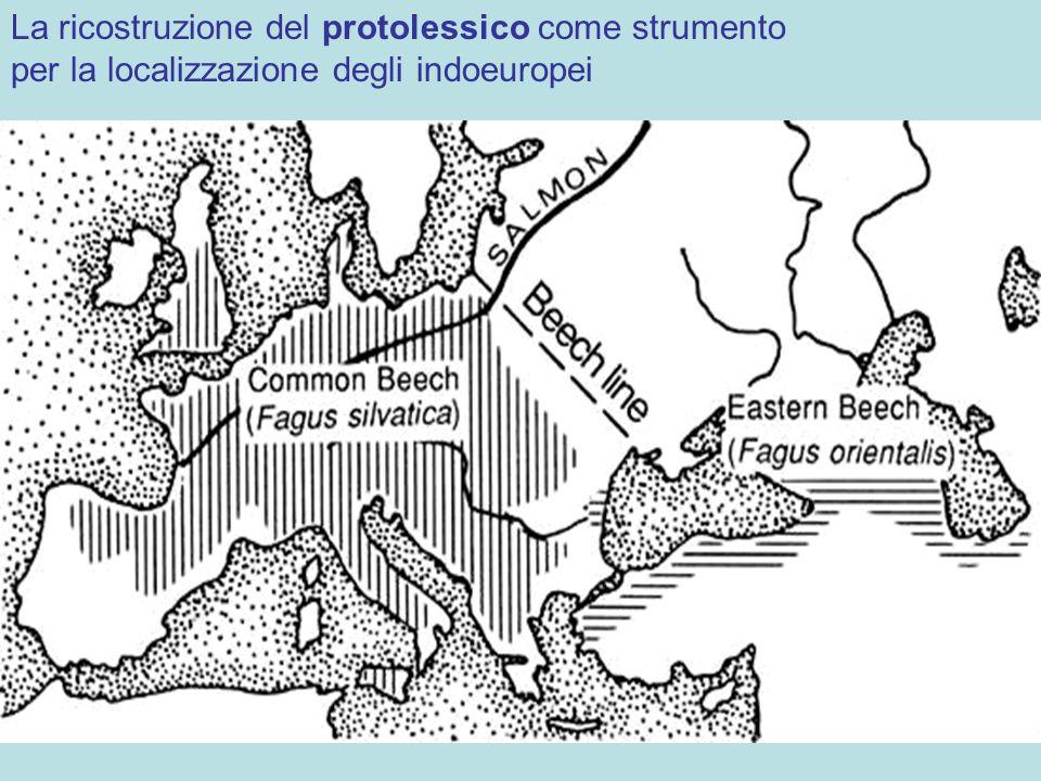 La ricostruzione del protolessico come strumento
