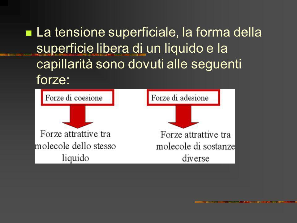 La tensione superficiale, la forma della superficie libera di un liquido e la capillarità sono dovuti alle seguenti forze: