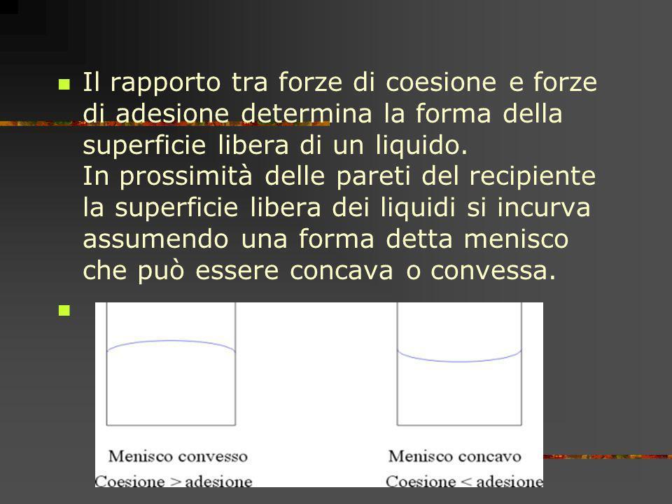 Il rapporto tra forze di coesione e forze di adesione determina la forma della superficie libera di un liquido.