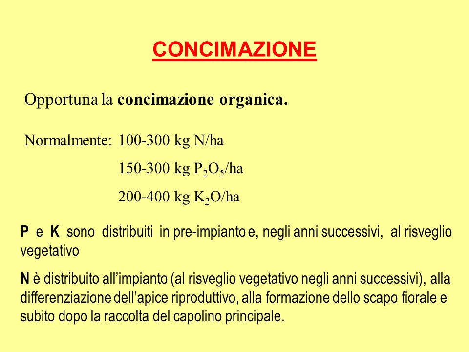 CONCIMAZIONE Opportuna la concimazione organica.