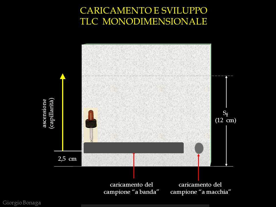 CARICAMENTO E SVILUPPO TLC MONODIMENSIONALE