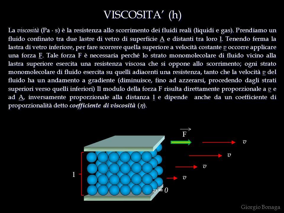 VISCOSITA' (h) F v v v l v v = 0
