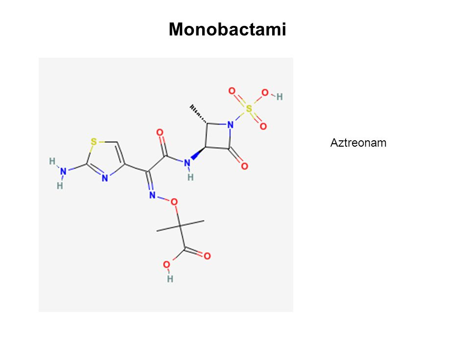 Monobactami Aztreonam