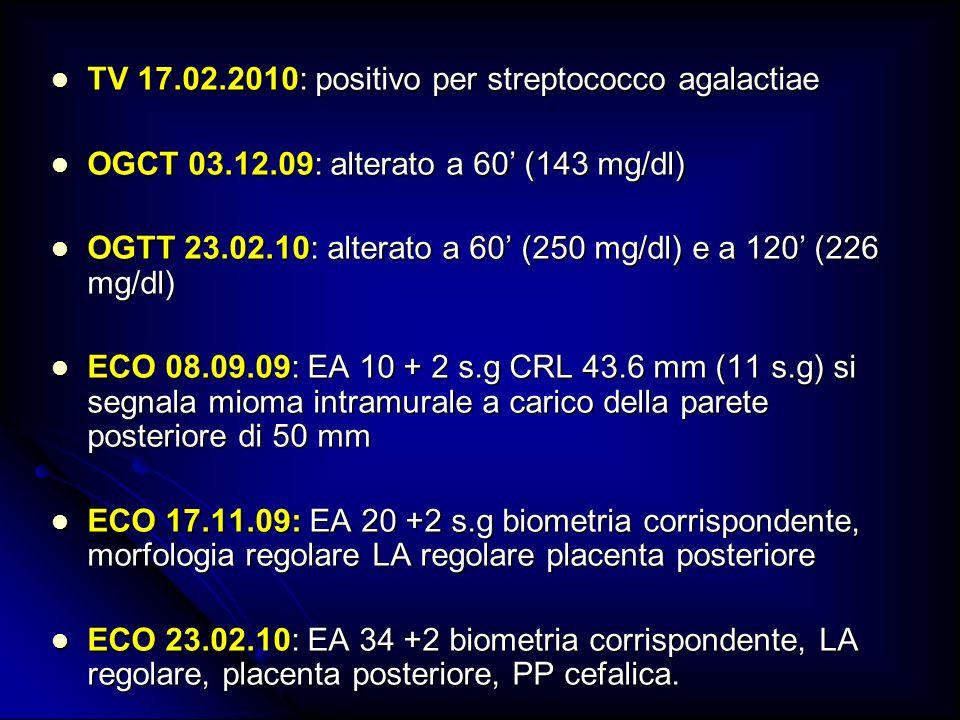 TV 17.02.2010: positivo per streptococco agalactiae