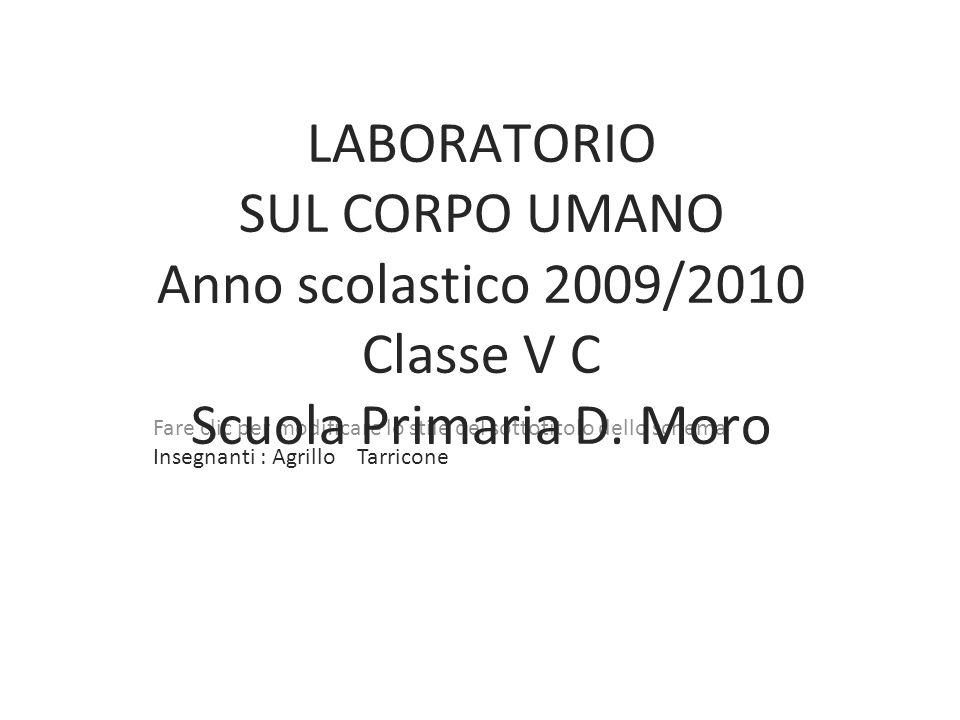 1 LABORATORIO SUL CORPO UMANO Anno scolastico 2009/2010 Classe V C Scuola Primaria D.