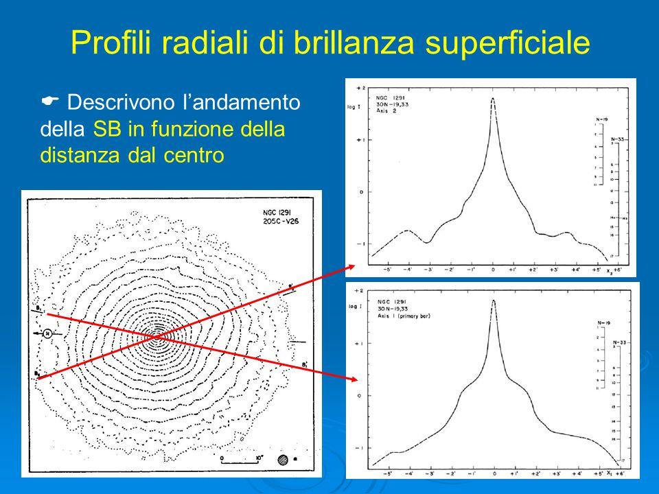 Profili radiali di brillanza superficiale