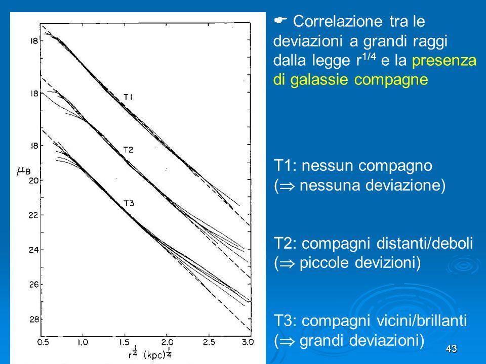  Correlazione tra le deviazioni a grandi raggi dalla legge r1/4 e la presenza di galassie compagne