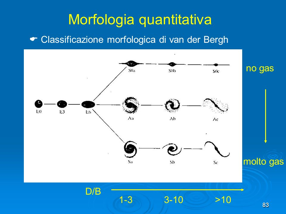 Morfologia quantitativa