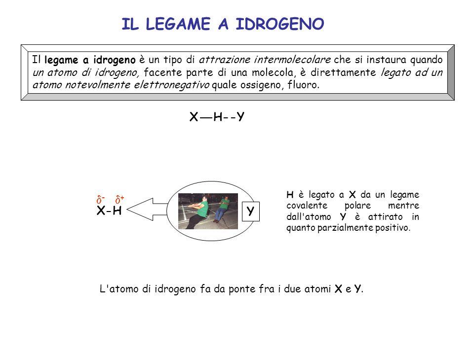IL LEGAME A IDROGENO X H--Y d- d+ X-H Y