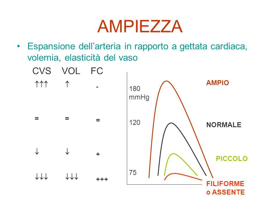 AMPIEZZA Espansione dell'arteria in rapporto a gettata cardiaca, volemia, elasticità del vaso. CVS VOL FC.