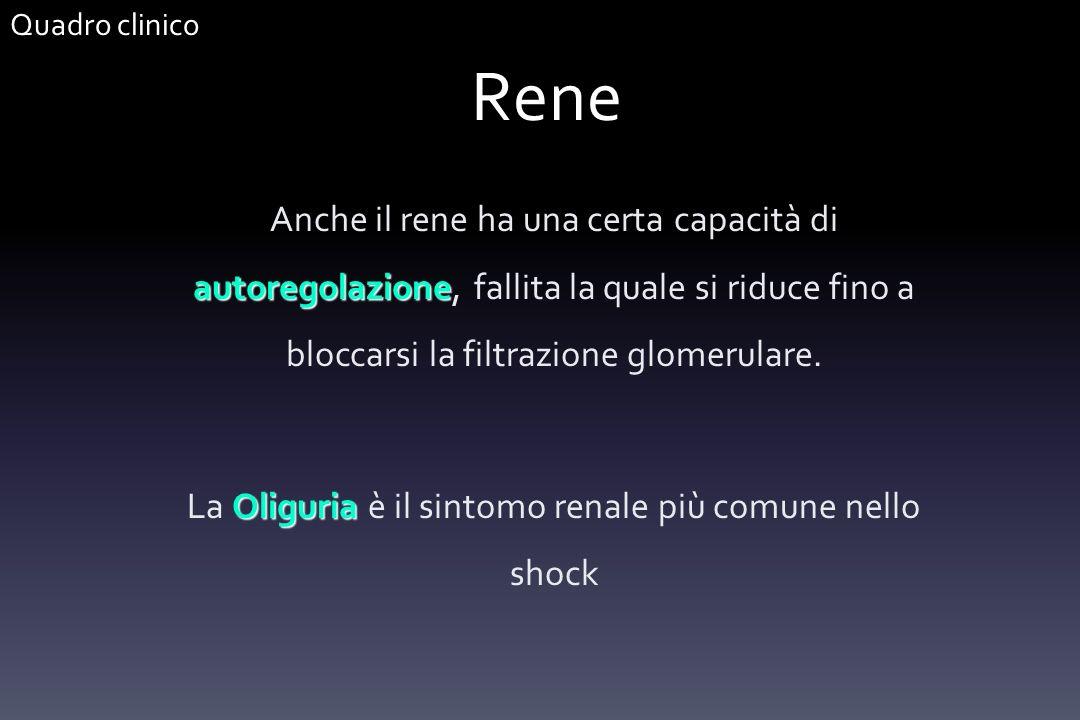 La Oliguria è il sintomo renale più comune nello shock