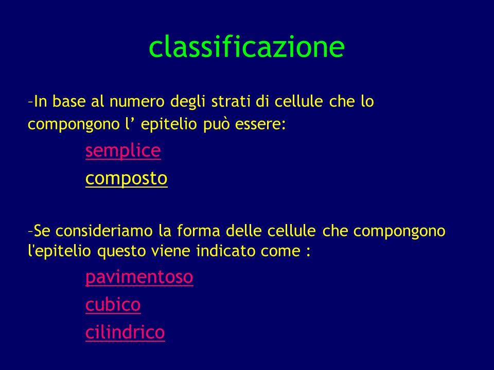 classificazione semplice composto pavimentoso cubico cilindrico
