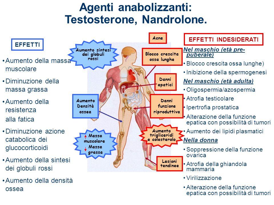 Agenti anabolizzanti: Testosterone, Nandrolone.