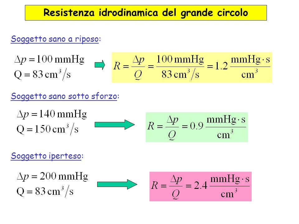 Resistenza idrodinamica del grande circolo