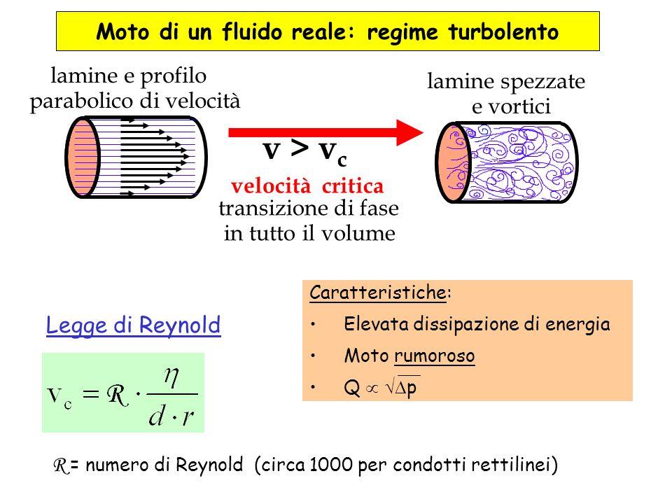 Moto di un fluido reale: regime turbolento