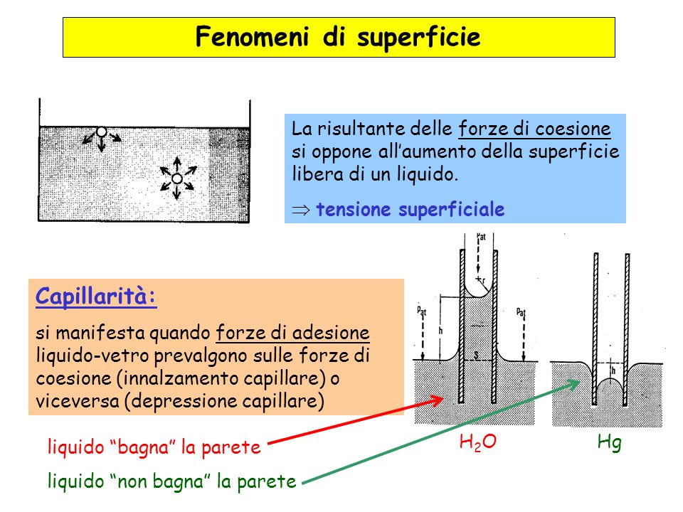 Fenomeni di superficie