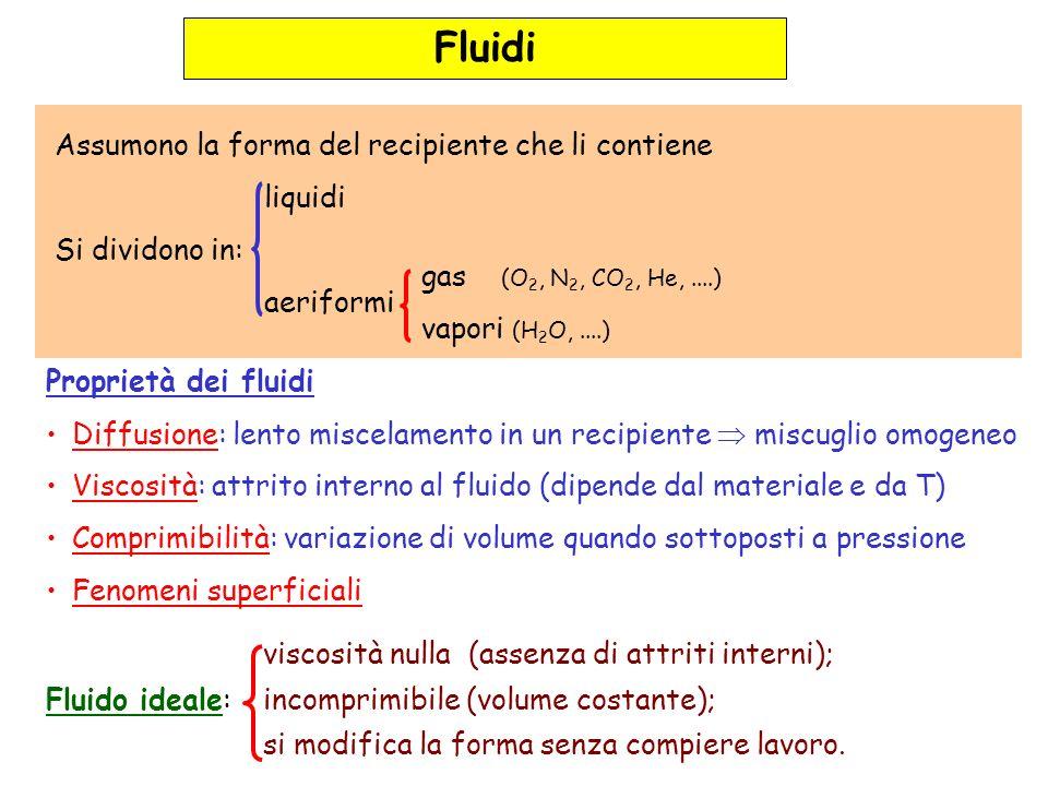 Fluidi Assumono la forma del recipiente che li contiene liquidi