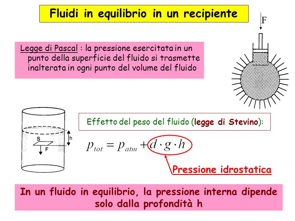 Fluidi in equilibrio in un recipiente
